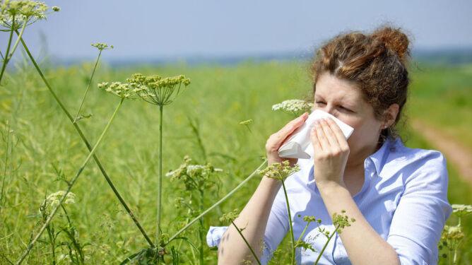 Komunikat dla alergików